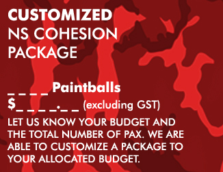 NS COHESION PACKAGES - Custom