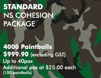 NS COHESION PACKAGES - Standard